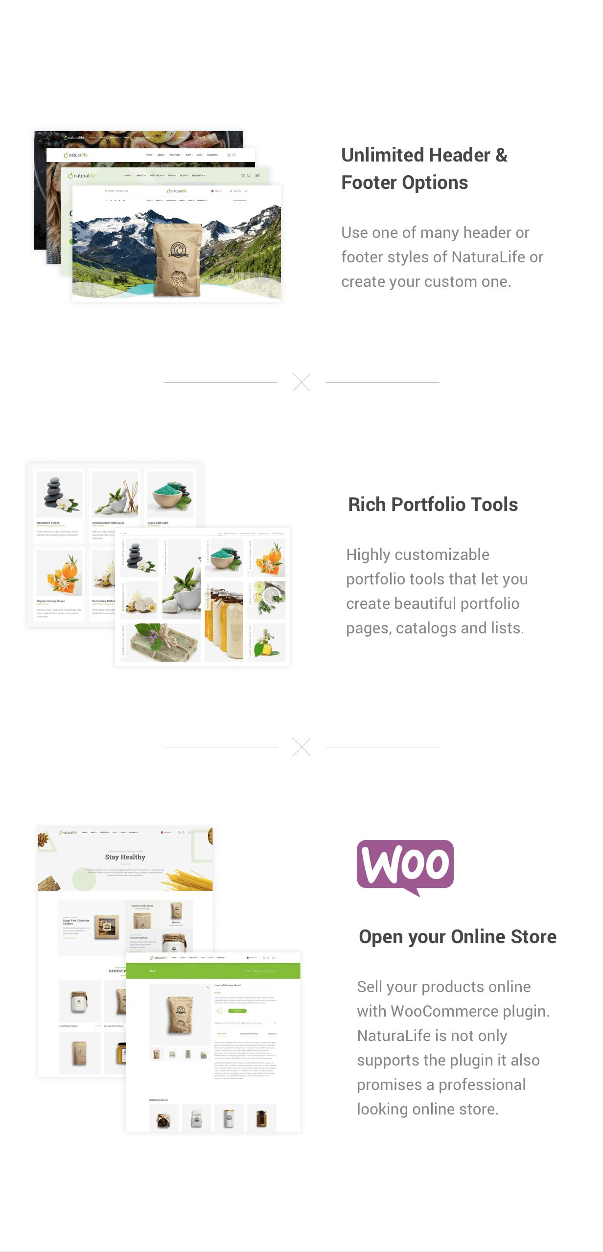 NaturaLife   Health & Organic WordPress Theme - 2